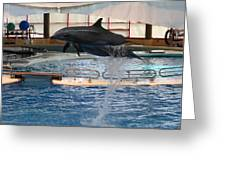 Dolphin Show - National Aquarium In Baltimore Md - 1212249 Greeting Card by DC Photographer