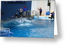 Dolphin Show - National Aquarium in Baltimore MD - 121292 Greeting Card by DC Photographer