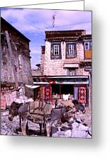 Donkeys In Jokhang Bazaar Greeting Card by Anna Lisa Yoder