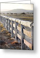 Don't Fence Me In Greeting Card by Holly Kempe