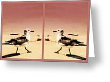 Double Gulls Collage Greeting Card by Susanne Van Hulst