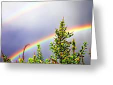 Double Rainbow Sky Greeting Card by Destiny  Storm