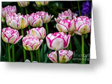Double Touch - By Sabine Edrissi Greeting Card by Sabine Edrissi