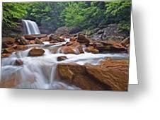 Douglas Falls Spring Rush Greeting Card by Joseph Rossbach