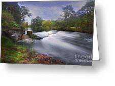 Down By The River Greeting Card by Roy  McPeak