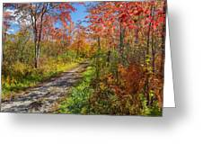 Down The Autumn Road Greeting Card by Bill  Wakeley