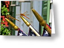 Dragonflies in Full Salute Greeting Card by Nancy Patterson