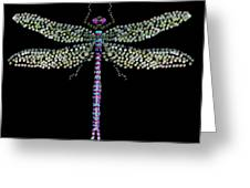Dragonfly Bedazzled Greeting Card by R  Allen Swezey