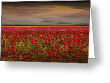 Drama Over The Flower Fields Greeting Card by Angela A Stanton