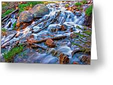 Dream Cascade Greeting Card by Brian Kerls