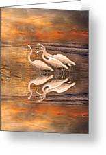 Dreaming Of Egrets By The Sea Reflection Greeting Card by Betsy C  Knapp