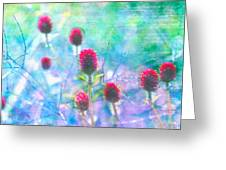 Dreamy Red Spiky Flowers 2 Greeting Card by Karen Stephenson