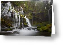 Dripping Wet Greeting Card by Darren  White