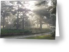 Driveway To Paradise  Greeting Card by Mike McGlothlen