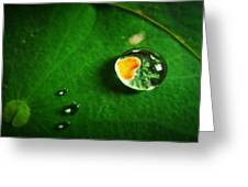 Droplet Of Love Greeting Card by Suradej Chuephanich