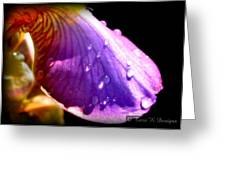 Droplet Greeting Card by Terri K Designs