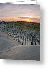 Dunes Of Cape Cod Greeting Card by Patrick Downey