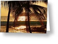 dusk Greeting Card by Athala Carole Bruckner