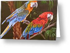 Dynamic Duo Greeting Card by Phyllis Beiser