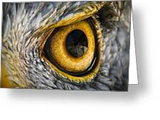Eagle Eye Greeting Card by Brian Archer