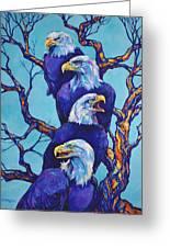 Eagle Tree Greeting Card by Derrick Higgins