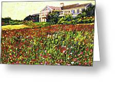 Early Evening At Cape Cod Greeting Card by David Lloyd Glover