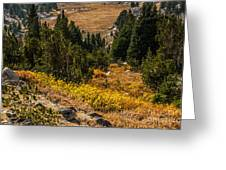 Early Fall In The Beartooth's Greeting Card by Sue Smith