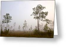 Early morning fog Greeting Card by Rudy Umans