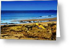 Early Morning On The Beach Greeting Card by Marco Oliveira