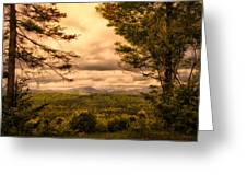Early Spring Rain Greeting Card by Bob Orsillo