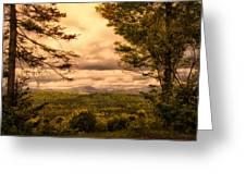 Early Spring Rain Greeting Card by Bob Orsillo