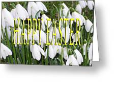 Easter 5 Greeting Card by Patrick J Murphy
