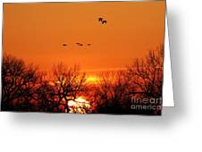 Easter Sunrise Greeting Card by Elizabeth Winter
