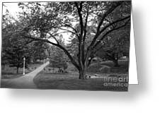 Eastern Kentucky University The Ravine Greeting Card by University Icons