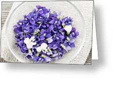 Edible Violets  Greeting Card by Elena Elisseeva