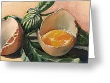 Egg And Basil Greeting Card by Alessandra Andrisani