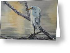 Egret At Dusk Greeting Card by Patricia Pushaw