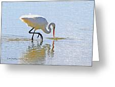 Egret Catches A Fish Greeting Card by Tom Janca