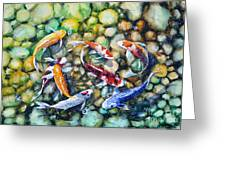 Eight Koi Fish Playing With Bubbles Greeting Card by Zaira Dzhaubaeva