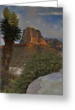 El Capitan At Sunrise Greeting Card by Stephen  Vecchiotti