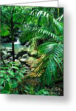 El Yunque Palm Trees And Waterfall Greeting Card by Thomas R Fletcher