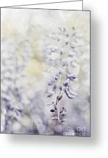 Elegant Wisteria Greeting Card by Darren Fisher