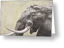 Elephant Greeting Card by Ashleigh Dix