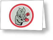 Elephant Boxer Boxing Circle Cartoon Greeting Card by Aloysius Patrimonio