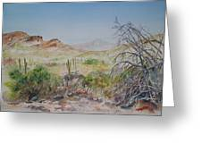Elephant Mountain From Dragonfly Trail Greeting Card by Michael McGrath