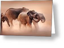 Elephants In Dust Greeting Card by Johan Swanepoel