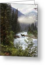 Elk Crossing Greeting Card by Leland D Howard