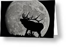 Elk Silhouette On Moon Greeting Card by Ernie Echols