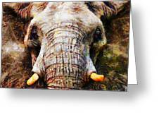 Ellie Greeting Card by Christopher Lane