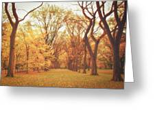 Elm Trees - Autumn - Central Park Greeting Card by Vivienne Gucwa